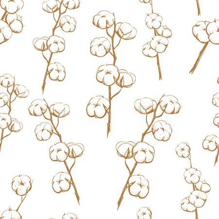 Cotton Plant seamless pattern. Vector Illustration