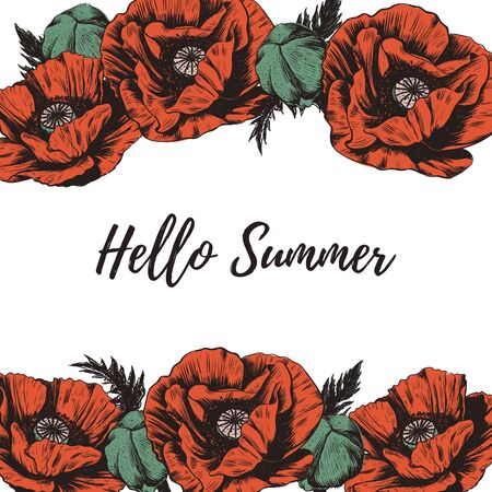 Hello summer flowers red poppies vector illustrator. Frame of flowers. Poppy Wreath Ilustrace