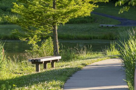 A quiet spot with park benches along a curved walking path next to a pond in the evening light.
