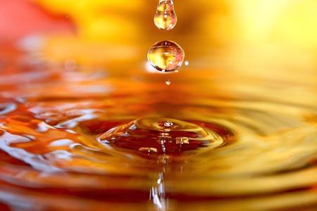 Otoño líquido. Las gotas de agua y hojas de naranja. Foto de archivo