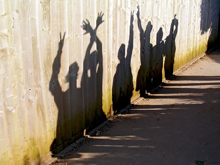 Shadows on a fence.  Stock Photo