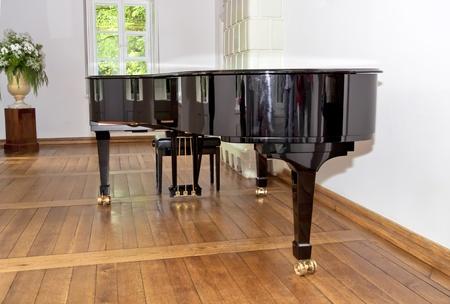 Museum of Frederick Chopin - Zelazowa Wola  Birthplace of composer  photo