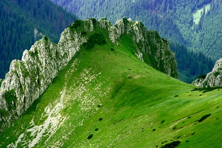 Landscapes of Poland   Mountain - Tatras  National park - ecological reserve