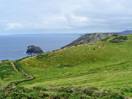 Coast of Cornwall near Tintagel