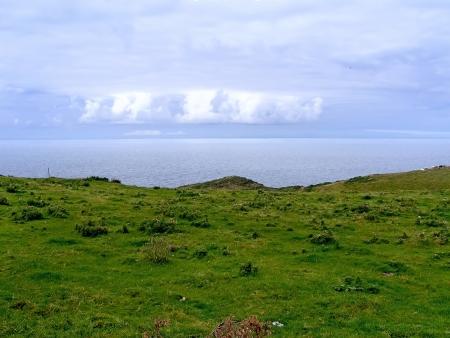camel post: Coast of Cornwall near Boscastle
