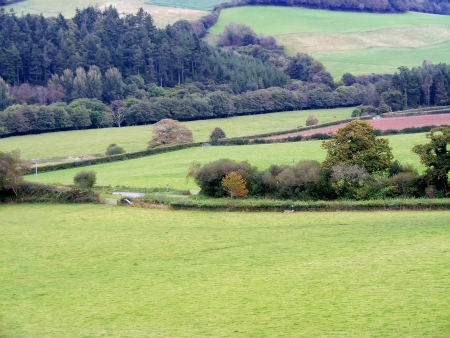 Autumn fields in England betweenr Lanhydrock and Restormel  Stock Photo