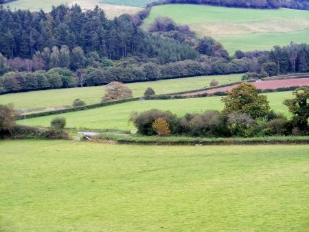 lanhydrock: Autumn fields in England betweenr Lanhydrock and Restormel  Stock Photo