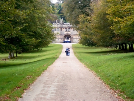 lanhydrock: Autumn park in Lanhydrock  Cornwall in Great Britain