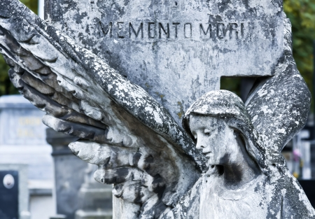 angel headstone: An 19th century antique cemetery in Warsaw  Poland   Stock Photo