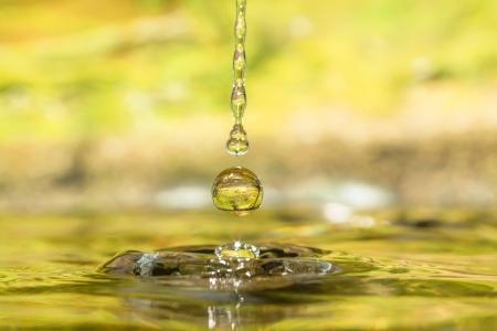 Drops of four seasons - autumn  免版税图像