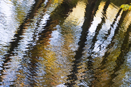 Abstract view of lake in the park. Autumn landscape.