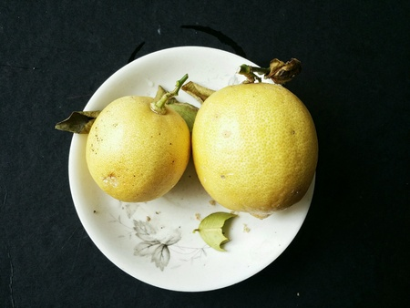rough: Two ripe lemon in a white plate