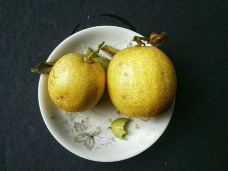 rough: Two ripe lemon in a white plate