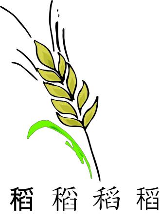 Rice illustration Stock Photo