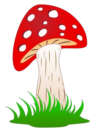Mushroom, toadstool or fly agaric standing in grass as cartoon and vector on a white isolated background Ilustração