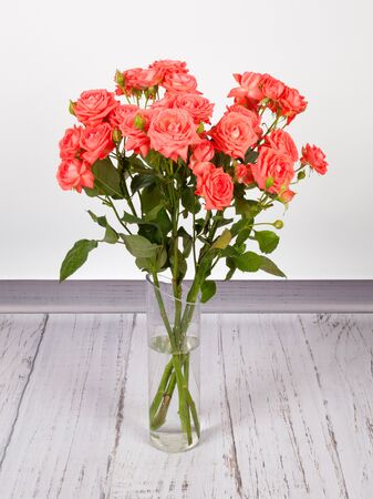Beautiful bouquet of red roses in transparent glass vase. On white grey background Stockfoto