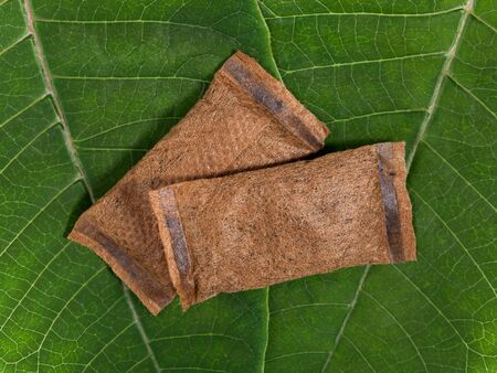 Pouches of smokeless tobacco on green leaves. Top view. Macro shot