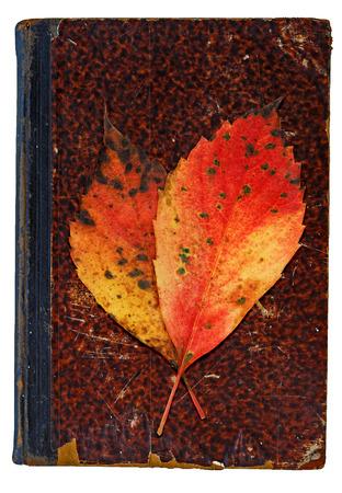 Herbstlichen Gedenkfeier Standard-Bild - 32787343