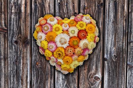 everlasting: Everlasting Flower Wall Decoration