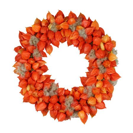 Herbstlicher Kranz mit Physalis und Withywind (Physalis und Gewöhnliche Waldrebe) auf weißem Standard-Bild - 65350824