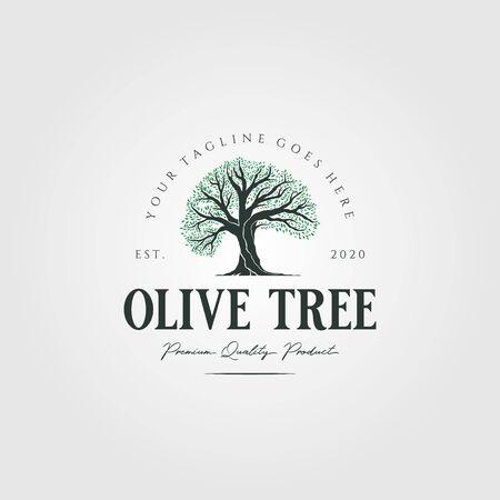 vintage olive tree nature logo vector illustration design
