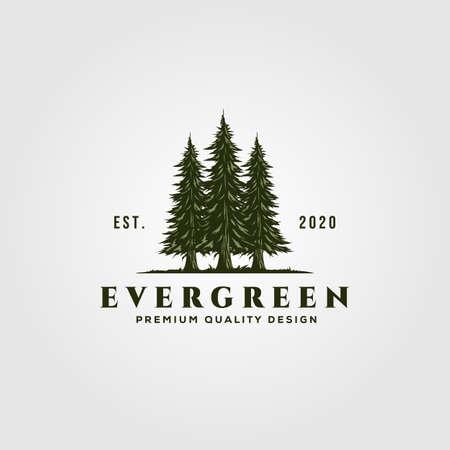 evergreen logo vintage illustration design, pine trees logo Illustration