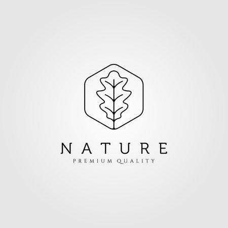 oak leaf line art minimalist logo vector illustration design Illusztráció