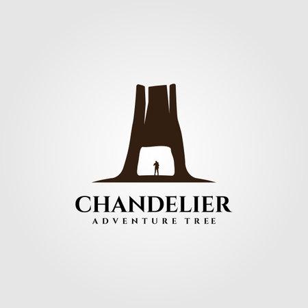 chandelier tree tunnel on redwood national park vector illustration design
