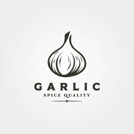 garlic onion object logo vector symbol illustration design, garlic spice and herb isolated design 向量圖像