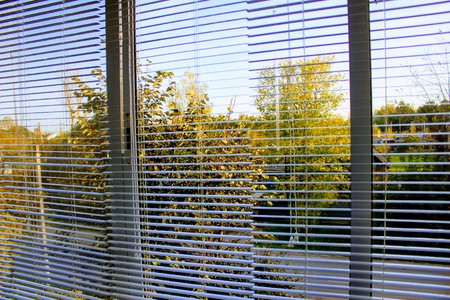 White horizontal aluminium blinds on the windows.