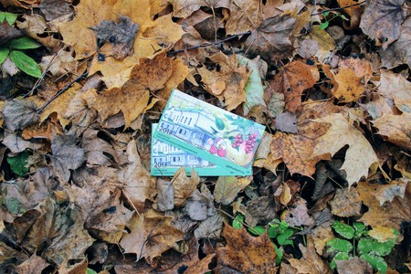 Two tickets to the museum in the estate of Leo Tolstoy in Yasnaya Polyana against the background of the fallen leaves in the park in October 2017. Editorial