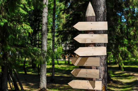 guidepost: Wooden arrow signs in a forest, clean from inscriptions Stock Photo