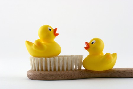 squeaky clean: Two yellow rubber ducks with brush Stock Photo