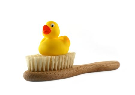 squeaky clean: Rubber duck on a  brush