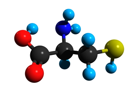 Molecular structure of cysteine (a proteinogenic amino acid), a precursor in the food, pharmaceutical and personal-care industries, 3D rendering Stock Photo