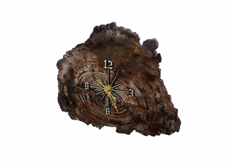 A clock made from a slab of petrified wood; isolated on white Stock Photo