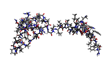 Molecular structure of kisspeptin (Protein KISS-1; kisspeptin-54; metastin), a protein essential for fertility, 3D rendering Stock Photo