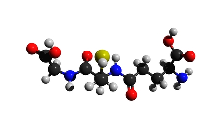 Molecular structure of glutathione (GSH), an important antioxidant, 3D rendering