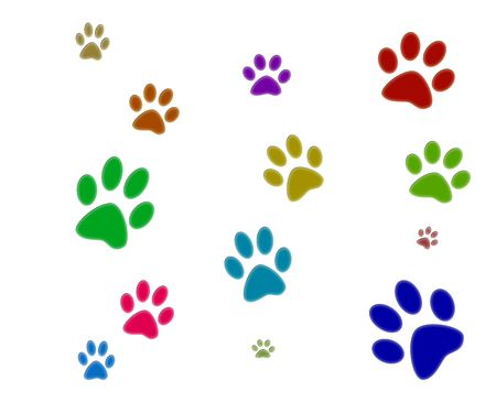 paw prints: Three colorfull paw prints isolated with white background.