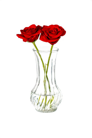 Two Red Roses In A Vase On A White Background Stock Photo Picture