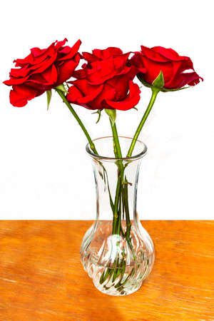 Three red roses in a vase on white background