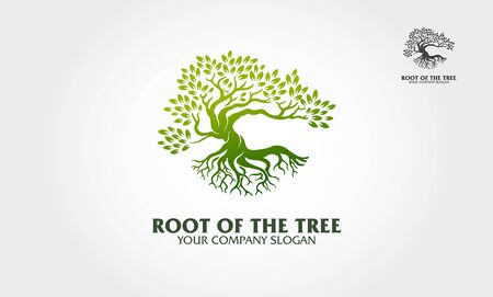 Root of the Tree logo illustrating a tree roots, branches. Excellent logo template for fashion, landscape, gardening business or in numerous fields related to eco green. Logo