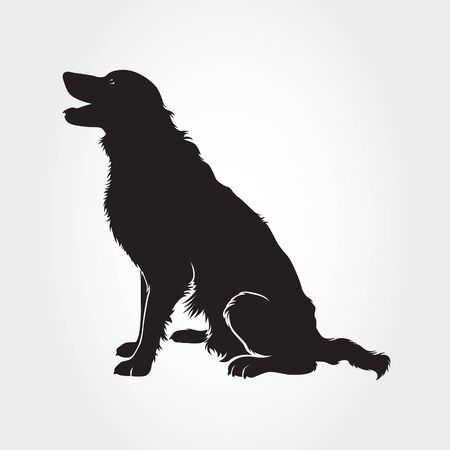 Vector Border Collie Dog Silhouette. I realy hope you'll enjoy this dog silhouette.