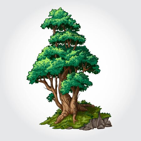 Green Tree Vector Illustration. Concept vector illustration for your design.