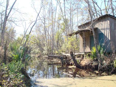 Jean Lafitte marécages, la Louisiane