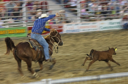 Cowtown Rodeo, NJ Editorial