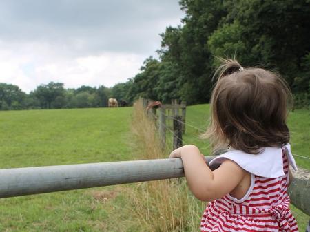 Little Girls Dreams Stock Photo