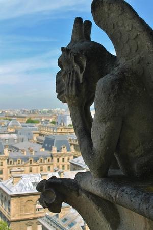 Views of a Gargoyle