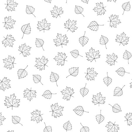 Autumn leaves. Vector monochrome seamless pattern with hand drawn outline leaves. Sketch maple and birch leaves. Leaf fall ornament on white background Çizim