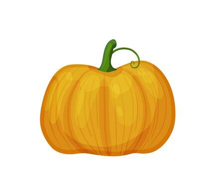 Pumpkin Çizim